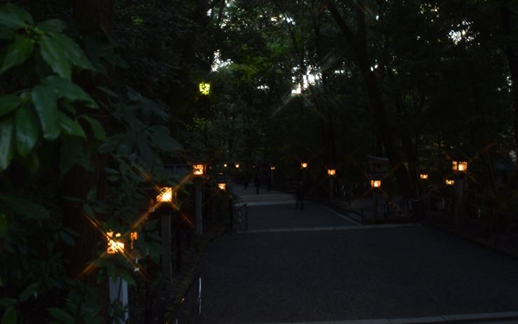 大神神社 夜の参道